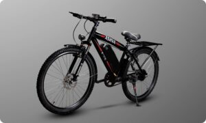 https://e-vehicleinfo.com/top-5-electric-bicycle-manufacturers-in-india-e-bicycle/